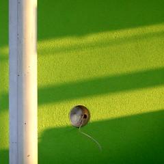 mai (misone2000) Tags: detail minimal loch grn sonnig schatten fassade neubau stange elektrik putz misone2000