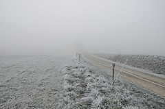 Road to Nowhere (Tinina67) Tags: road winter brown france cold grass fog fence frozen am frost december strasse au nowhere wiese tina marron weg odc ourdailychallenge artiguedieu tinina67