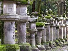 Nara (B r u N N o) Tags: japan nara japao
