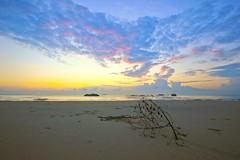 IMG_9474_ searching for the rising sun (aca111) Tags: travel beach sunrise canon eos shorelines seascapes places malaysia kuantan pahang pantai beserah pantaibalok balok balokbeach tamronspaf1024mmf3545diii canoneos550d eos550d rebelt2i kissx4 kampungbaluk