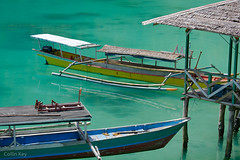 Hold your Breath (Collin Key) Tags: tranquil color bay turquoise sulawesi water malenge calmness boat lestari indonesia togianislands sea idn