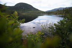 The Kinsmans (Zac Staffiere) Tags: whitemountains hiking outdoors nh 4000 footers appalachian kinsman north south explore