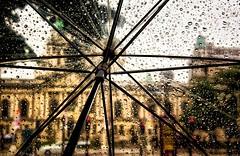 Belfast city hall in the rain.. (teedee.) Tags: belfast rain weather wet umbrella city hall