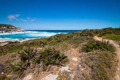 Cala Mesquida (florianpluecker) Tags: cala mesquida arta mallorca spain spanien balearen strand beach water sea meer