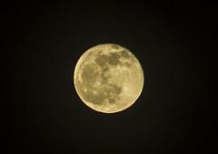 IMG_0329_1 (pavel.milkin) Tags: thailand phuket kathu moon travel zoom canon canon550d 550d jupiter jupiterlens jupiter21m 21m night foolmoon mooncatcher