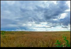 160713-9655-XM1.jpg (hopeless128) Tags: france sky eurotrip 2016 fields clouds nanteuilenvalle aquitainelimousinpoitoucharen aquitainelimousinpoitoucharentes fr
