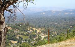 IMG_3753 (kz1000ps) Tags: tour2016 california sanfrancisco bayarea saratoga mountainwinery vineyard siliconvalley aerial vista skyline america unitedstates usa scenery landscape