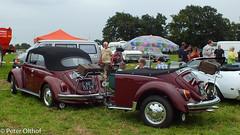 Volkswagen Kfer / Kever / Beetle Cabriolet (peterolthof) Tags: neurhede 1011092016 peter olthof peterolthof