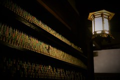-- (m-miki) Tags: nikon d610 japan        temple buddha statue dedication astounding image