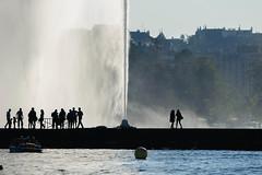 DSC_2236.jpg (david roessli) Tags: silhouette people jetdeau genve switzerland ch