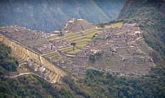 Machu Picchu-55