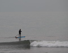 Paddle Boarding on a Calm Atlantic Ocean (45/52) (aka Buddy) Tags: ocean fall canon eos rebel newjersey board asburypark nj paddle atlantic og monmouthcounty 2012 week45 4552 550d t2i efs18135mmf3556is 522012 52weeksthe2012edition weekofnovember4