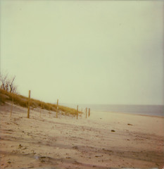 A 70 degree Day in November | November 10. 2012 (a midwest girl) Tags: november autumn lake film beach water analog lakemichigan analogue indianadunes indianadunesnationallakeshore westbeach theimpossibleproject px680 colorprotection