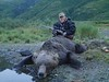 Alaska Moose and Bear Hunt - Dillingham 21