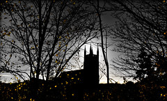Church of St. Godric, Castle Chare, Durham City. Autumn. (CWhatPhotos) Tags: churchofstgodric castlechare durhamsaintcitystationapproachstreetsilhouettedsilhouetteautumntimeshadowsshadowshadowednortheastenglandtreestreeyellowleavesleafskyskiesselectivecolorcolourcolourscolorspoppopping photograph with picture pictures photo photos image images foto fotos that have which contain olympus epl1 1442mm cwhatphotos partial part coloring colouring flickr