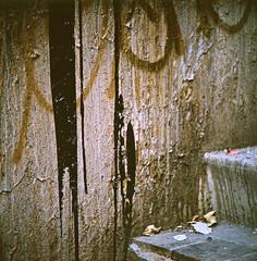 (andre dos santos) Tags: new york city nyc newyorkcity newyork 120 6x6 tlr film rollei rolleiflex zeiss square lens reflex kodak twin slide queens chrome squareformat medium format positive ektachrome e100vs 35e planar maspeth 75mm maspethmarch20wrykbillyandjoe