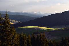 Radiša Živković  - Chasing the light II (Radisa Zivkovic) Tags: wood sunlight snow mountains green forest sunrise landscape spring nikon scenery europe ray serbia beam highland d200 srbija kamenagora