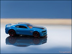 Camaro Hot-Wheels Edition 2013 (tonywheels) Tags: chevrolet car voiture reflet reflect chevy hotwheels 164 edition mattel musclecar diecast