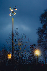 Lights in the dark (Mauritzson Foto) Tags: blue light sky lights himmel ljus frihet fotosondag fotosöndag fs121125
