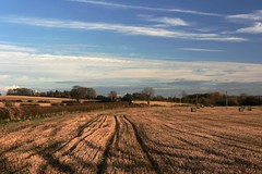 Field Tracks (sjbrady88) Tags: sky field tracks hay tadcaster