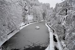 Winter in Buchholz (sandyloewe) Tags: schnee winter see wasser himmel sachsen jogging eis bäume spaziergang annaberg buchholz schneebruch novembersandylöwe