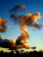 Sky Dragon (moonjazz) Tags: sky weather animals clouds photography dragon shapes puff fluffy imagination