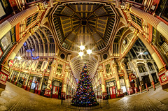 Leadenhall Market Merry Christmas (Scott Baldock Photography) Tags: road christmas street old city uk nightphotography decorations light england urban fish colour building tree london eye art monument station yellow architecture night buildings londonbridge festive point lights nikon long exposure neon place angle market path interior centre low symmetry ceiling east dome gb fleet avenue 8mm riverthames gherkin willis lloyds bishopsgate cityoflondon lightroom leadenhall gracechurch fenchurch lloydsoflondon ec3 londonarchitecture cityarchitecture samyang undershaft d7000 blinkagain
