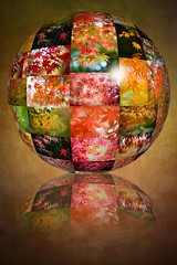 Autumn Globe (Jacky Parker Floral Art) Tags: autumn trees portrait reflection art fall texture nature floral colors leaves vertical closeup garden season japanese maple colorful colours overlay foliage reflect acer round format orientation digitallyaltered clourful globesphere palamtum flypapertextures