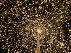 Navidad (Fraaancisca.) Tags: luz navidad luces noche