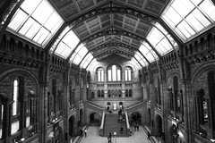Natural History Museum 51/52 (ClareC79) Tags: blackandwhite bw london museum architecture canon naturalhistorymuseum week51 canon1740mm weekofdecember16 canon5dmkii 522012 52weeksthe2012edition 52weeks2012