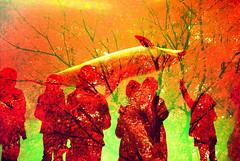 -autumnal aquarium (Hodaka Yamamoto) Tags: double doubleexposure doubles multipleexposure redscale maple autumn fall silhouette aquarium shadow dolphin tree water lomography lomolca nagoya