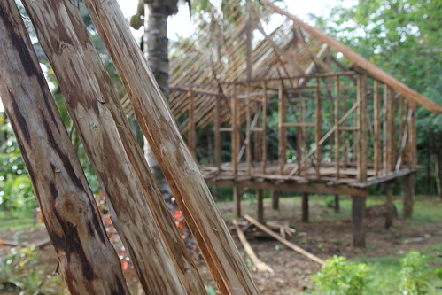 Housing materials in Malita, Solomon Islands. Photo by Wade Fairley, 2012.