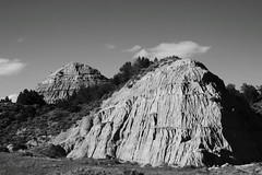 texture (capnadequate) Tags: theodorerooseveltnationalpark nationalpark park nature landscape badlands northdakota southunit scenic blackandwhite texture butte
