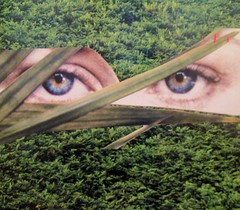 Paranoia in the Woods: My Apocalyptic Childhood Nightmares (joannmuench) Tags: collage collageart artcollage vintage retro surreal surrealism surrealistic grass eyes hiddeneyes watchful paranoid afraid joannmuench desertloca