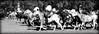 Entreverando (Eduardo Amorim) Tags: cavalos caballos horses chevaux cavalli pferde caballo horse cheval cavallo pferd cavalo cavall tropilla tropilha herd tropillas tropilhas 馬 حصان 马 лошадь crioulo criollo crioulos criollos cavalocrioulo cavaloscrioulos caballocriollo caballoscriollos ayacucho provinciadebuenosaires buenosairesprovince argentina sudamérica südamerika suramérica américadosul southamerica amériquedusud americameridionale américadelsur americadelsud eduardoamorim gaucho gauchos gaúcho gaúchos