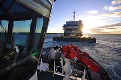 Multratug Veia Mate Offshore DSC_3896 (larry_antwerp) Tags: fabricom engiefabricom cofelyfabricom veiamate offshore windfarm windpower multratug26 9667863 multratug saarens paula ponton barge netherlands nederland schip ship vessel        schelde