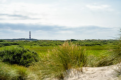 Ameland (Herman1705) Tags: hollum friesland nederland ameland waddenzee hollumfrieslandnederland vuurtoren lighthouse duinen dunes laowa 60mm