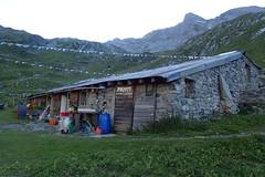 Gte de Dorbon (8pl) Tags: montagne alpage dorbon derborence cabane gte drapeaux herbe valais suisse