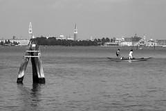 vita di laguna (conteluigi66) Tags: luigiconte laguna barca remi rematori bricole gabbiano acqua calmo venezia sanmarco autofocus