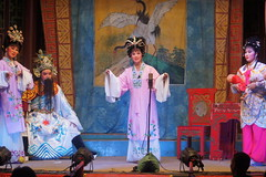DSC09150 (rickytanghkg) Tags: sony a550 sonya550 hongkong yulan festival chinese tradition
