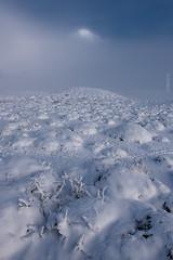 Solito - Torres del Paine (impodi@gmail.com) Tags: torresdelpaine chile nieve patagonia montaa picosnevados