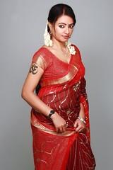 South actress Madhu Chanda Photos Set-1-Hot In Saree (7)