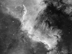 The Great Wall (cfaobam) Tags: ts10f4ontc newtonontc newton ontc 1000mm f4 gpu aplanatic koma korrector moravian g28300moravian g28300 g28300fw astrodon lodestar losmandy g11 littlefoot photo pixinsight astronomie deepsky goto north america nebula ngc7000 nordamerika nebel