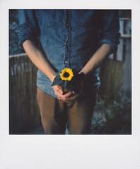 17/09/2016 (the girl who made it on her own) Tags: ronakeller danielschmitt birthday sunflower sunflowerbirthday sunflowersformybirthday daniel polaroid polaroidsx70 sunflowerinhishands onourbalcony sunfloweronpolaroid film filmdiary ronasfilmdiary filmmemories