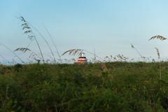 _JAM7746 (Jamil D750) Tags: miami beach south pointe park water blue skies green grass skyscrapers pier lifeguard house evening field nikon d750