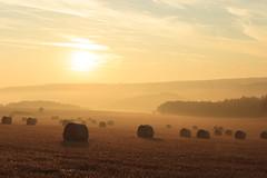 Strohballen (550D.enny) Tags: strohballen feld nebel morgengrauen fog foggy sunrise 80d 18135 18135mm canon