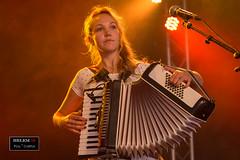 IMG_1306-2 (helem581230) Tags: concert folk bluegrass accordeon live music musicien