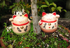 (-Michik-) Tags: cute monument japan cat sweet small hiroshima miyajima  nippon neko  nihon maneki daruma  itsukushima