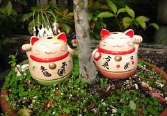 宮島 (-Michik-) Tags: cute monument japan cat sweet small hiroshima miyajima 日本 nippon neko 神社 nihon maneki daruma 物 itsukushima 広島 だるま 厳島 招き猫 達磨 にほん 幸せ 赤い 広島県 小さい にっぽん ジャパン 招く 招き 福幸 可愛いかわいい