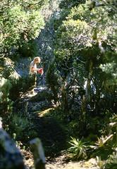 Campsite at Reservoir Lakes, Southern Range, SW Tasmania, 15th January, 1973. (garratt3) Tags: lake film pentax takumar unescoworldheritagesite campfire bushwalking tasmania kodachrome wilderness tasmanian southcoasttrack tasmanianwilderness southwestnationalpark southernrange lunerange